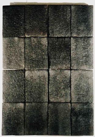 Héraldique. Bois brûlés, fongicide. Atelier 2000. Photographie: Joël Jonik